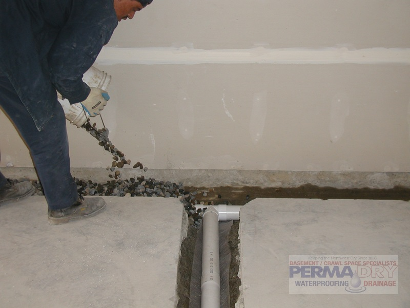 basement drainage repair in Seattle