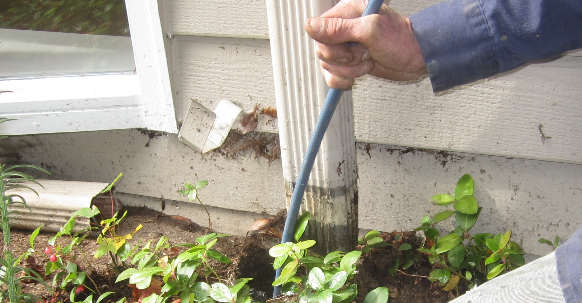 Seattle standing water repair . Downspout cleaning.